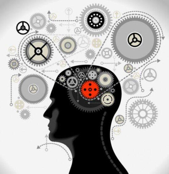 ¿Cómo distinguir si estoy usando el pensamiento rápido o lento de Daniel Kahneman? Los 10 TEST que definen tu pensamiento 19